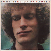 TONY BIRD: Bird of Paraside